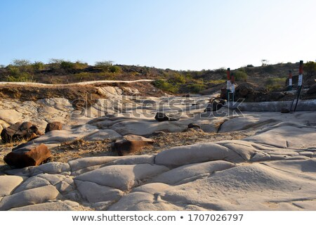 Archaeological park with fossils Stock photo © adrenalina