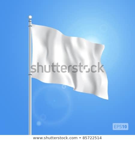 Blanco bandera aislado símbolo derrotar negocios Foto stock © popaukropa