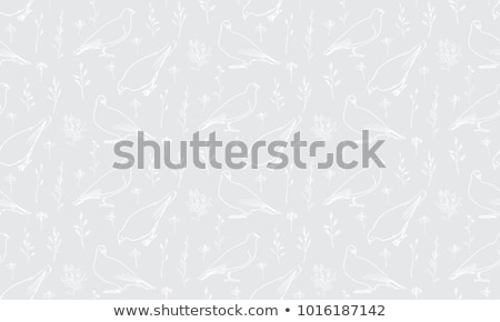 Dove pattern. Pigeon seamless background. Vector illustration Stock photo © MaryValery
