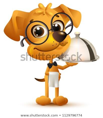 смешные собака официант лоток блюдо белый Сток-фото © orensila