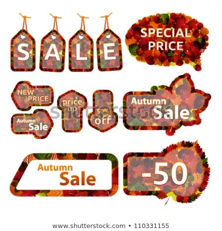 Jesienią sprzedaży czat bańki pomarańczowy pozostawia tle Zdjęcia stock © SArts