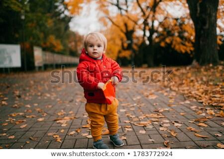 jovem · bebê · menino · caminhada · parque · feliz - foto stock © neonshot
