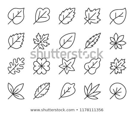 garden line web glyph icons stock photo © anna_leni