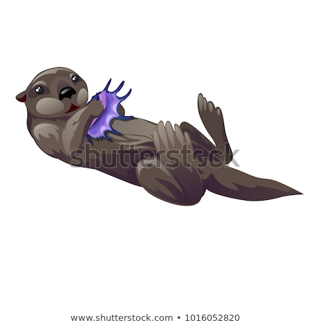 Grey otter playing with purple exotic sea shell isolated on white background. Vector cartoon close-u stock photo © Lady-Luck