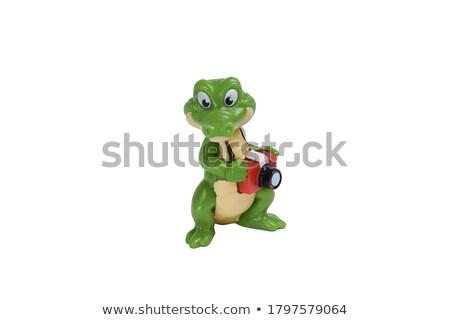 Brinquedo crocodilo isolado olho projeto fundo Foto stock © colematt