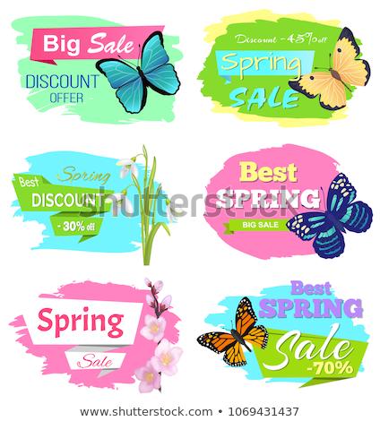 Legjobb választás nagy tavasz vásár címke pillangó Stock fotó © robuart