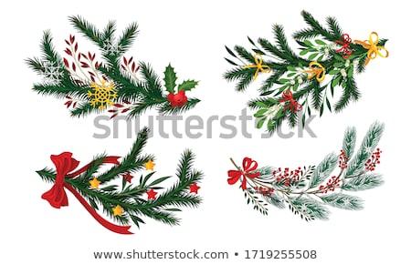 Natal enfeitar fita vetor coroa Foto stock © robuart