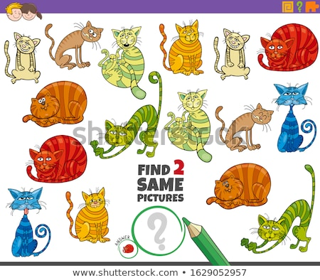 Stok fotoğraf: find two identical cats game for children