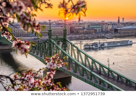 Budapest Danube river and Liberty bridge panoramic springtime vi Stock photo © xbrchx