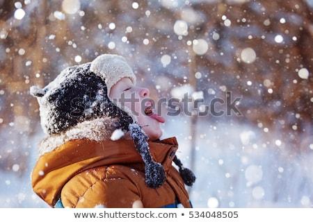 мало · мальчика · играет · улице · снега - Сток-фото © dolgachov