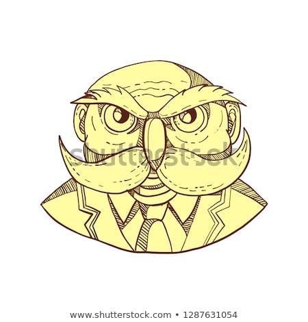 öfkeli baykuş adam bıyık karalama renk Stok fotoğraf © patrimonio