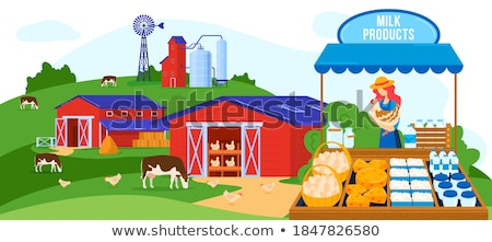 Dairy Production in Market, Milk and Cheese Seller Stock photo © robuart