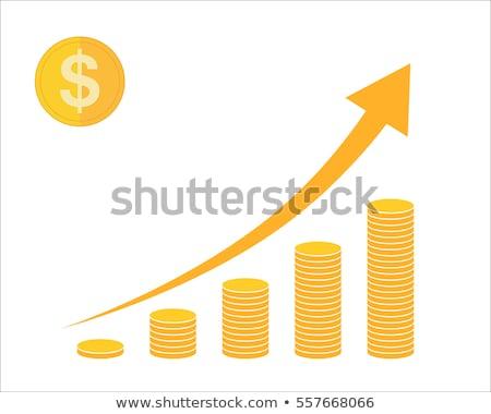 Arany érmék növekedés jövedelem izolált nyíl Stock fotó © robuart