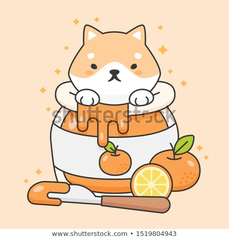 Cute shiba inu dog in an orange jam jar Stock photo © amaomam