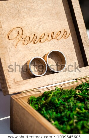 обручальными кольцами Vintage окна мох деревенский Сток-фото © dariazu