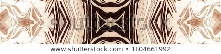 Mandala patronen bruin illustratie voedsel achtergrond Stockfoto © bluering