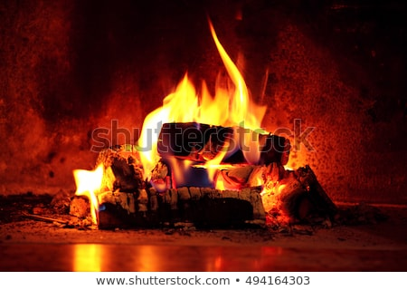 Burning wood in open fire place. Close up background. Stock photo © artjazz
