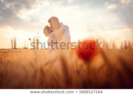 Casamento casal beijando romântico campo de trigo mulher Foto stock © Kzenon
