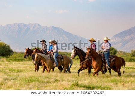Stok fotoğraf: Gençler · atlar · yüz · mutlu · saç · sandalye