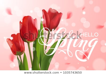 filed with red tulips  Stock photo © compuinfoto