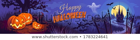 halloween card with witch, pumpkins and bats Stock photo © marinini