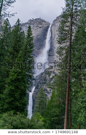 Yosemite водопада большой Гранит горные Сток-фото © Goldcoinz