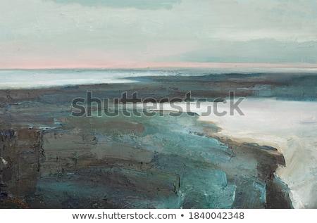 winter waves deep sea Stock photo © sirylok