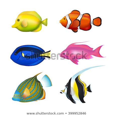 Underwater world banner with yellow fishes, vector illustration Stock photo © carodi
