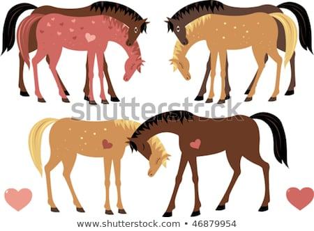 cavalos · vintage · parque · de · diversões · madeira · cavalo · pintar - foto stock © konradbak