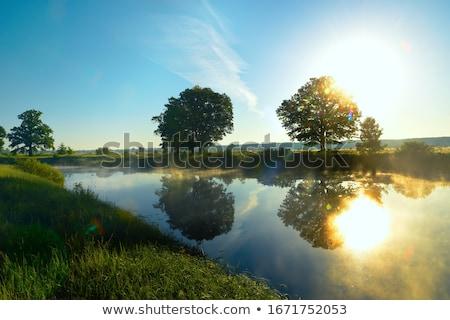 Calm lake reflection Stock photo © contas30