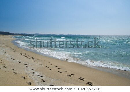 Footprints on the shore. stock photo © TheFull360