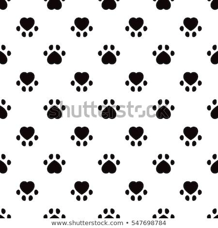 Гранж · лапа · печать · вектора · собака · дизайна - Сток-фото © burakowski