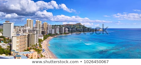 panorama of waikiki honolulu hawaii stock photo © backyardproductions