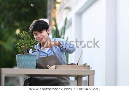 garden scissors on cement  Stock photo © yanukit