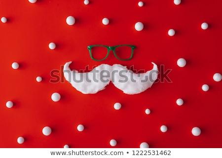 Hiver moustache décoration pin aiguilles baies Photo stock © Lightsource