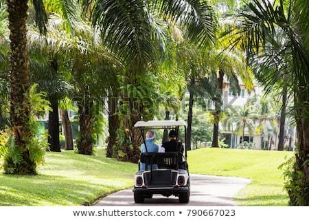 golfe · carro · verão · clube · grama · esportes - foto stock © hofmeester