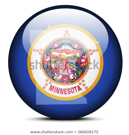 Mapa bandeira botão EUA Minnesota vetor Foto stock © Istanbul2009