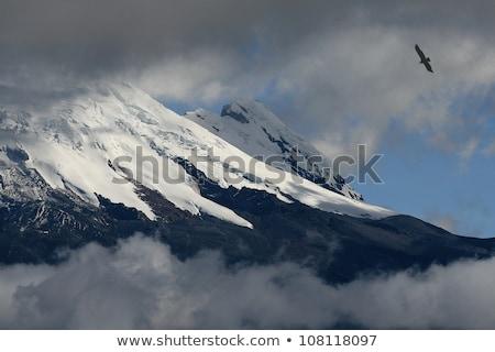 snow capped Antisana Vocano, Ecuador Stock photo © meinzahn