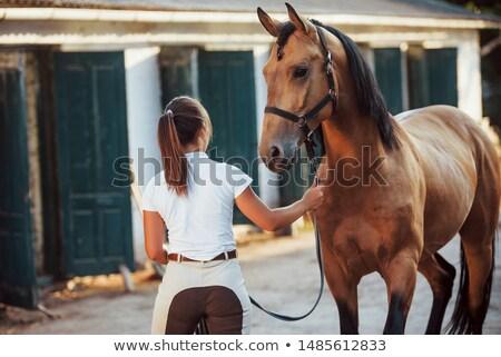 Horsewoman Stock photo © smuki