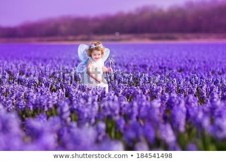 Nyár baba tündér illusztráció repülés pillangó Stock fotó © Dazdraperma