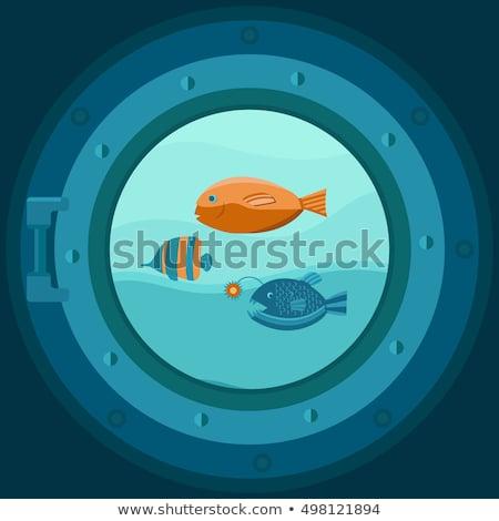 Ship porthole underwater cover design,  vector illustration Stock photo © carodi
