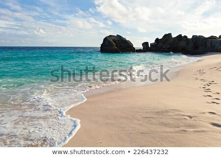 tropikal · plaj · manzara · kaya · oluşumu · ada · okyanus · mağara - stok fotoğraf © arenacreative