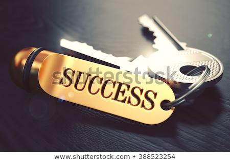 progress   bunch of keys with text on golden keychain stock photo © tashatuvango