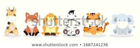 zebra face icon stock photo © kiddaikiddee