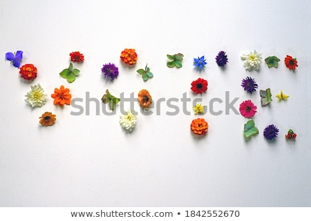 letters usa made of flowers stock photo © frescomovie