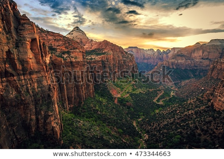 on the road in zion national park stock photo © capturelight