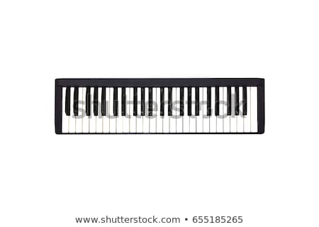 Musik Tastatur Detail schwarz weiß Schlüssel selektiven Fokus Stock foto © claudiodivizia