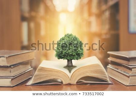 environmental law stock photo © lightsource