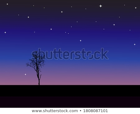 Cosmic night view with light. EPS 10 Stock photo © beholdereye