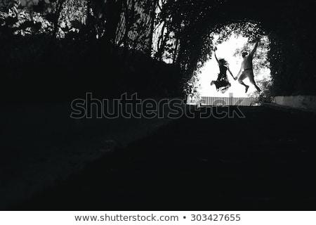 Pár ugrik befejezés alagút fák gyönyörű Stock fotó © tekso